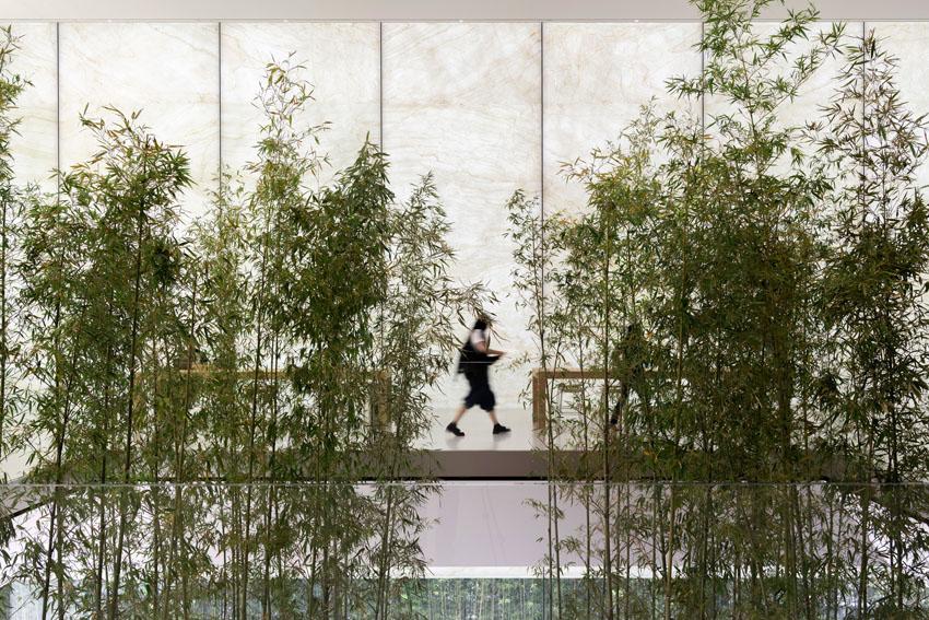 Không gian xanh độc đáo tại cửa hàng Apple ở Macau 2