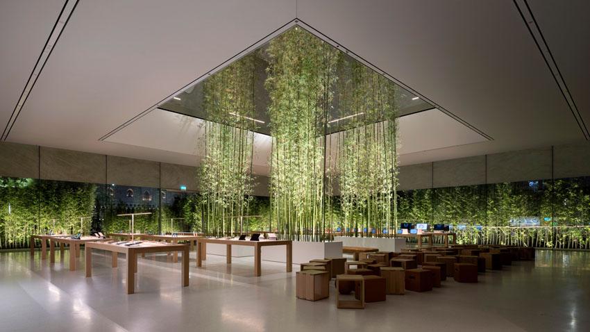 Không gian xanh độc đáo tại cửa hàng Apple ở Macau 5