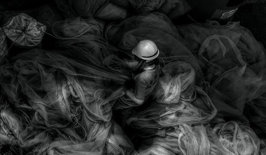 Bức ảnh đã giành giải thưởng của Joan Pabona.
