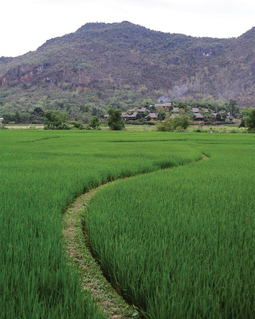 Một khu nghỉ dưỡng phong cách bản địa ở Mai Châu