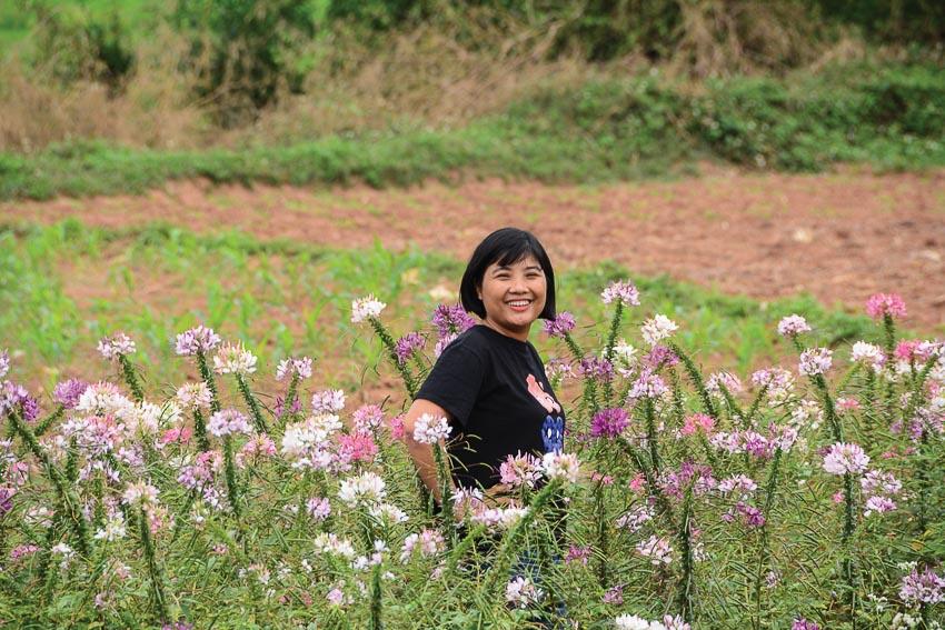 Du khách giữa vườn hoa tam giác mạch ở Mai Châu
