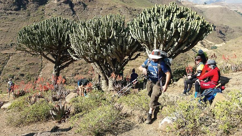 Khám phá vườn quốc gia Simien hoang dã ở Ethiopia 5