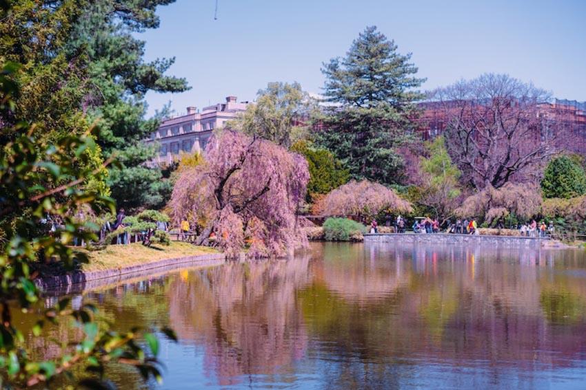 10 khu vườn nổi tiếng của thế giới 8