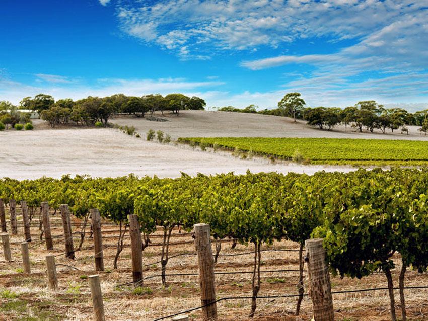 12 địa điểm đáng tham quan ở Úc ngoài Sydney 8