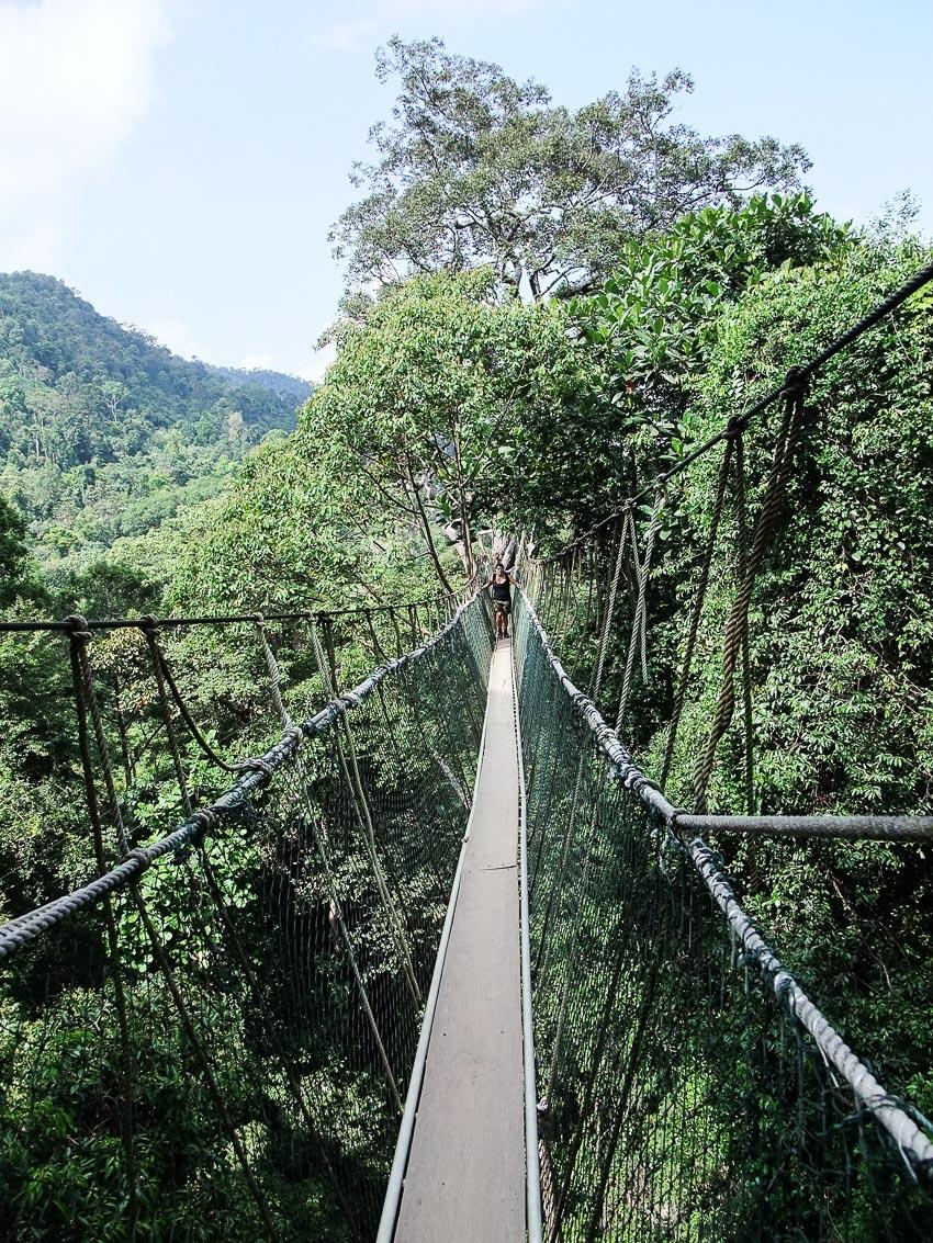 13 chiếc cầu đi bộ ngoạn mục nhất thế giới 9