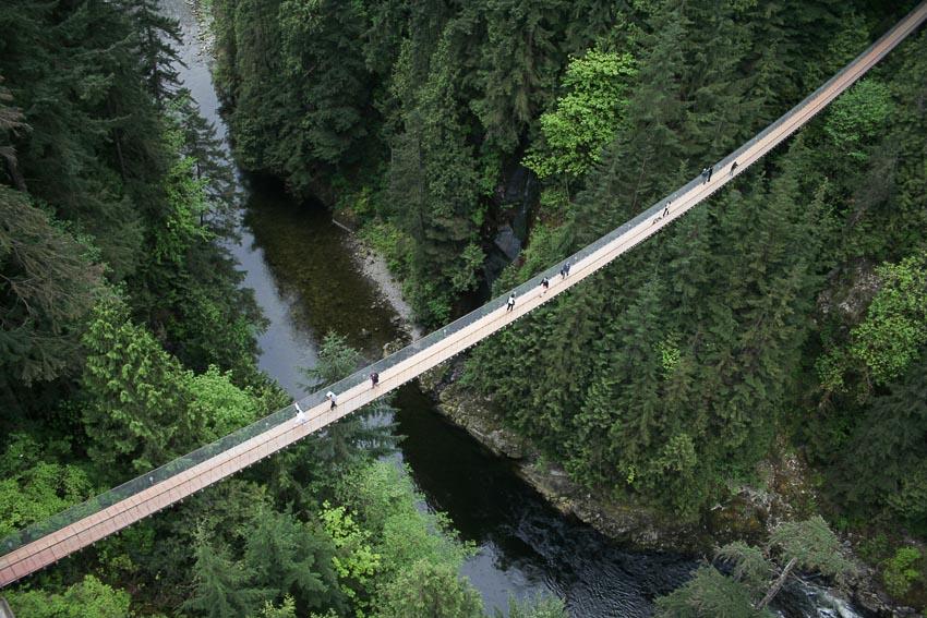 13 chiếc cầu đi bộ ngoạn mục nhất thế giới 13