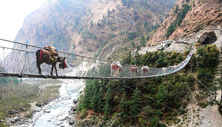 13 chiếc cầu đi bộ ngoạn mục nhất thế giới 1
