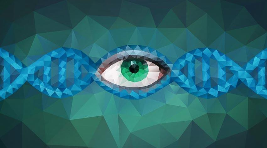 5 cách gien tác động đến cuộc sống con người 8