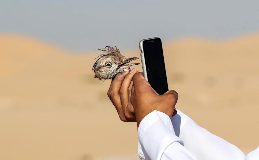Loài người và Smartphone 27