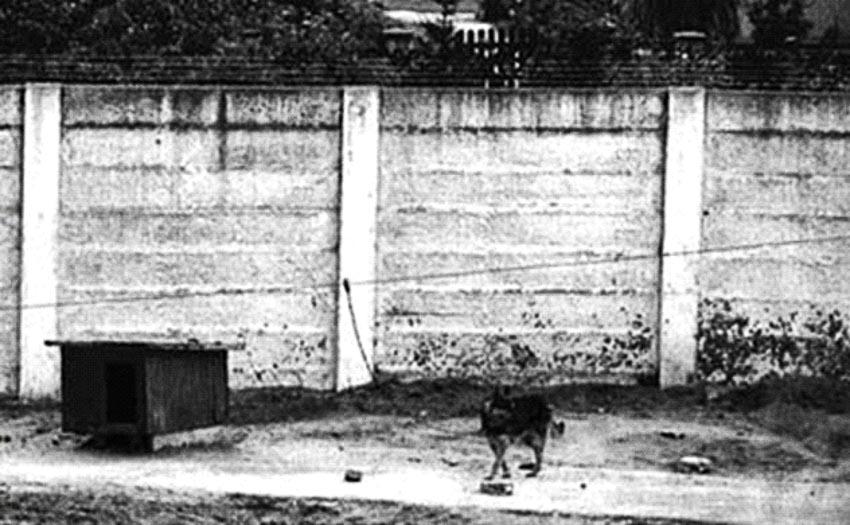 Những điều chưa biết về bức tường Berlin 6