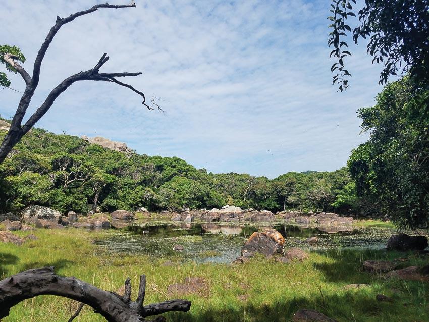 """Hồ cô đơn - hay còn gọi là hồ vách đá dựng, một """"giếng trời"""" của thiên nhiên giữa rừng"""