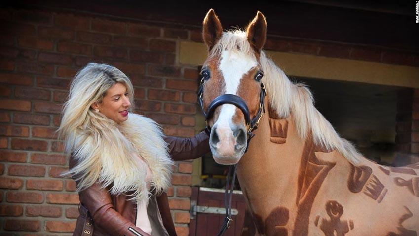 Melody Hames - người thiết kế những bộ lông ngựa 1