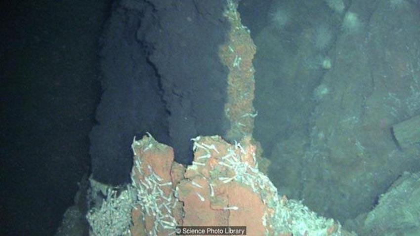 Nghiên cứu lập bản đồ dưới đáy đại dương 2