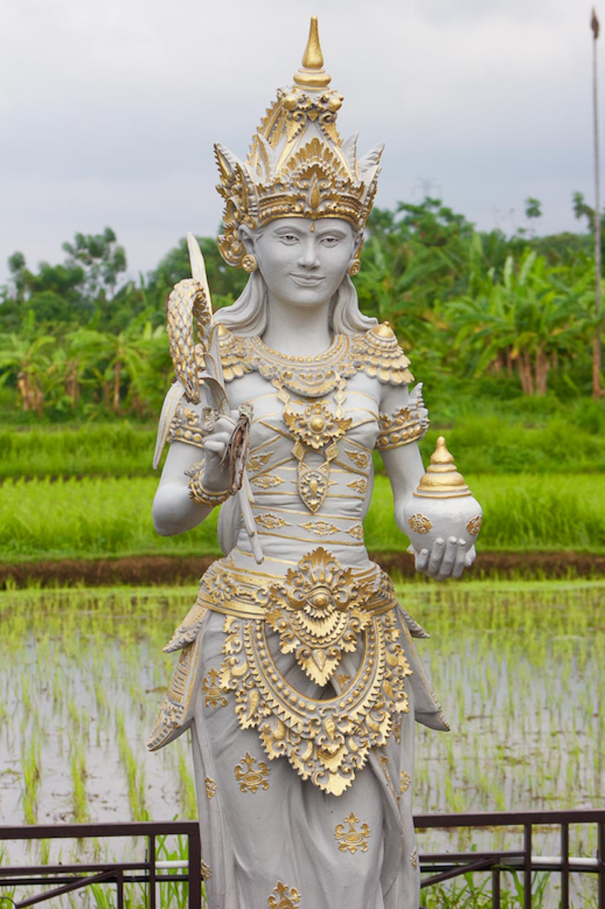 Nữ thần lúa ở Đông Nam Á 15