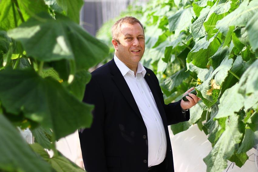 Tương lai phát triển nông trại trên sa mạc 12