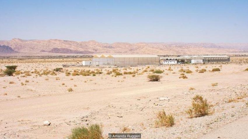 Tương lai phát triển nông trại trên sa mạc 4