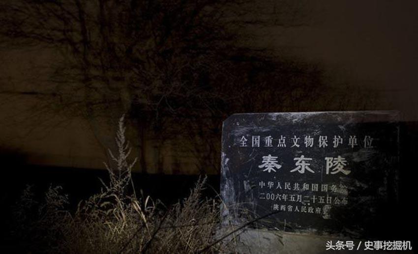 Truy tìm bọn đào trộm khu mộ Tần Đông Lăng - 1