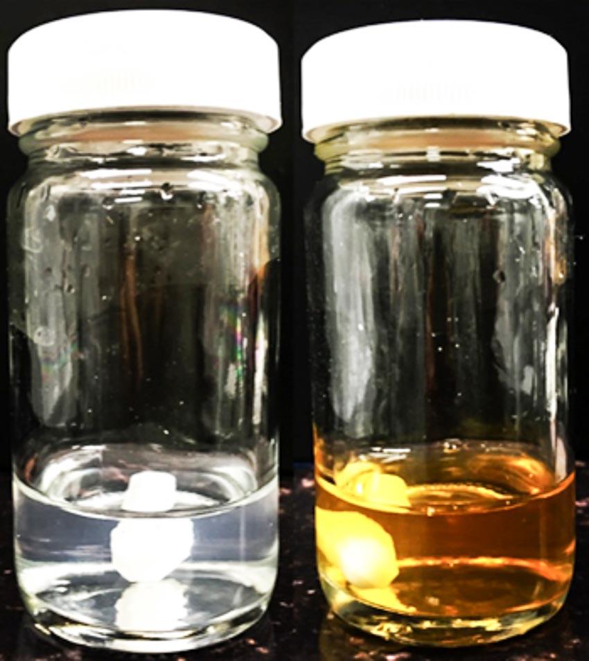 Thiếu niên chế tạo chất nhúng chống vi khuẩn - 2