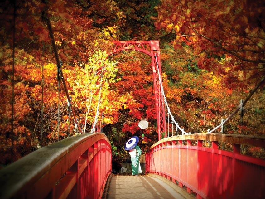 Nơi nào đón mùa thu sớm nhất tại Nhật Bản? - 13