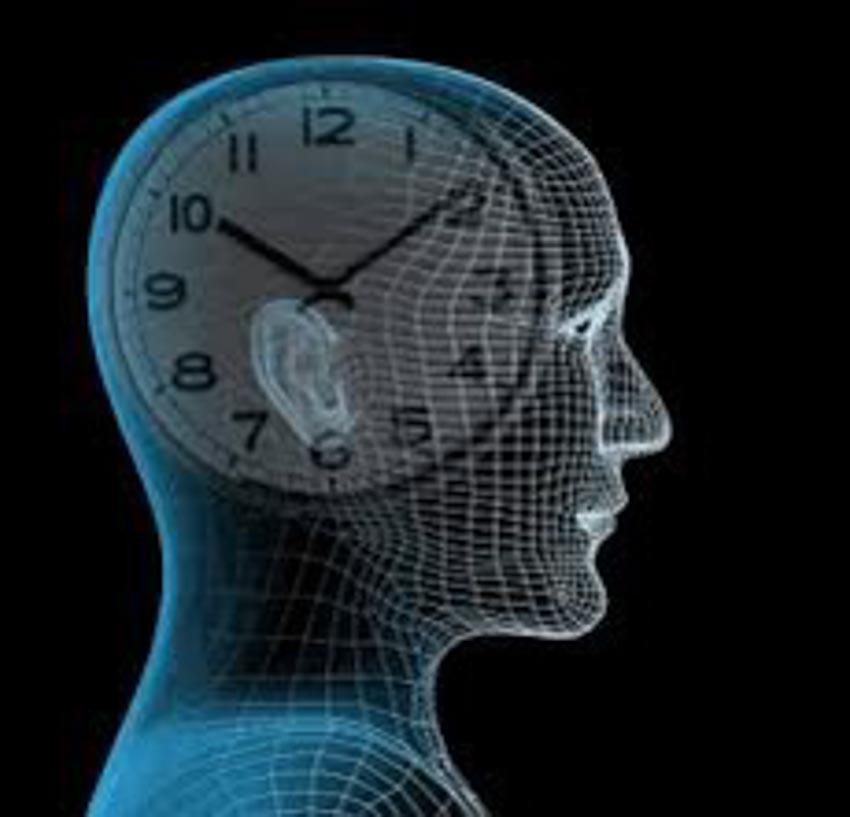 Tại sao đồng hồ sinh học của con người lại quan trọng? - 2