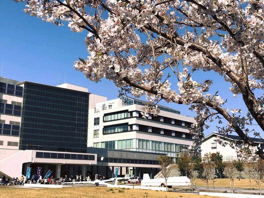 Năm học bổng du học Nhật Bản được săn đón - 3