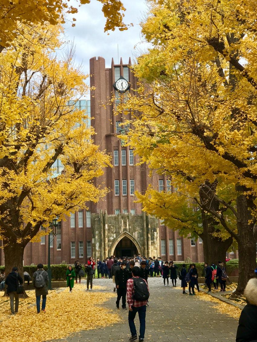 Năm học bổng du học Nhật Bản được săn đón - 8