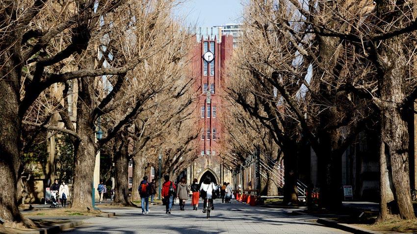 Năm học bổng du học Nhật Bản được săn đón - 7