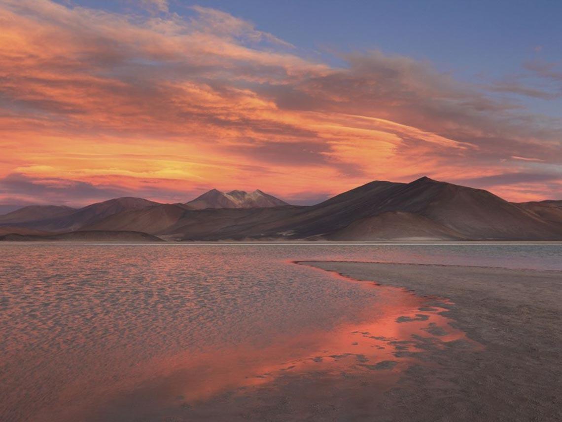 30 bức ảnh đoạt giải thưởng Bảo tồn thiên nhiên thế giới 2019 khiến bạn mê mẩn - 26