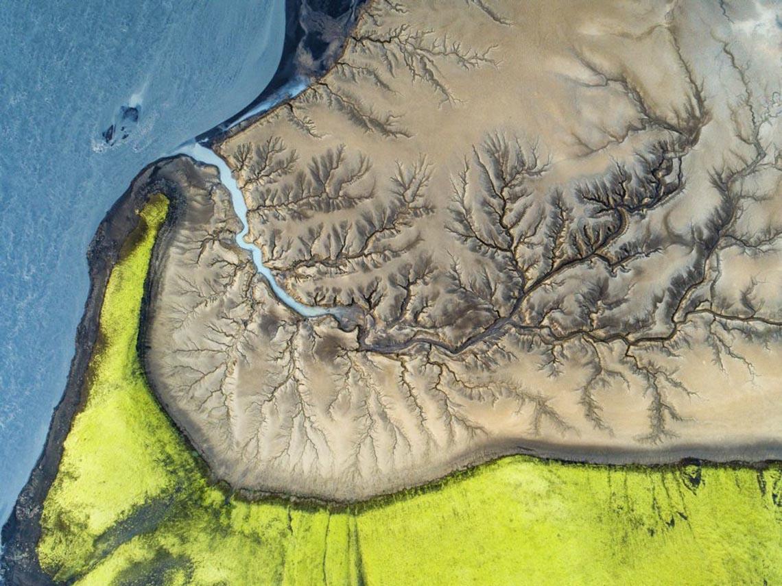 30 bức ảnh đoạt giải thưởng Bảo tồn thiên nhiên thế giới 2019 khiến bạn mê mẩn - 27