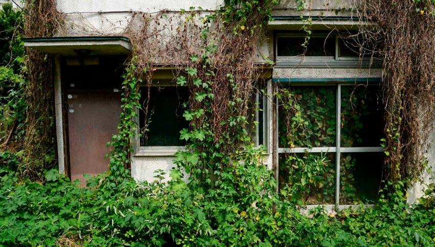 Giải pháp cho những ngôi nhà ma tại Nhật Bản - 7
