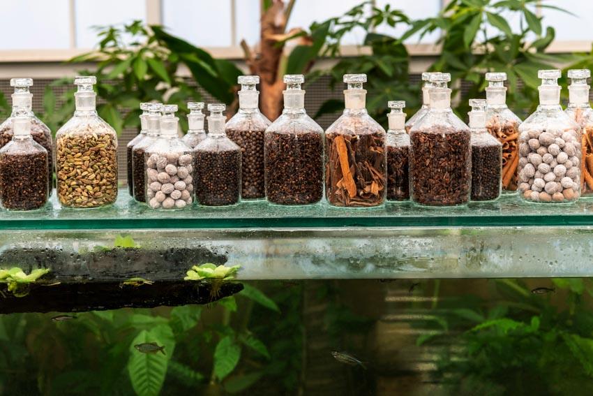 Không gian ẩm thực The Spice Garden - 10