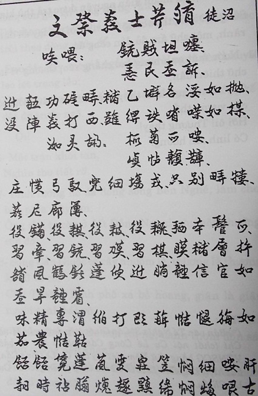 Nguyễn Đình Chiểu và văn hóa Lục Vân Tiên - 5