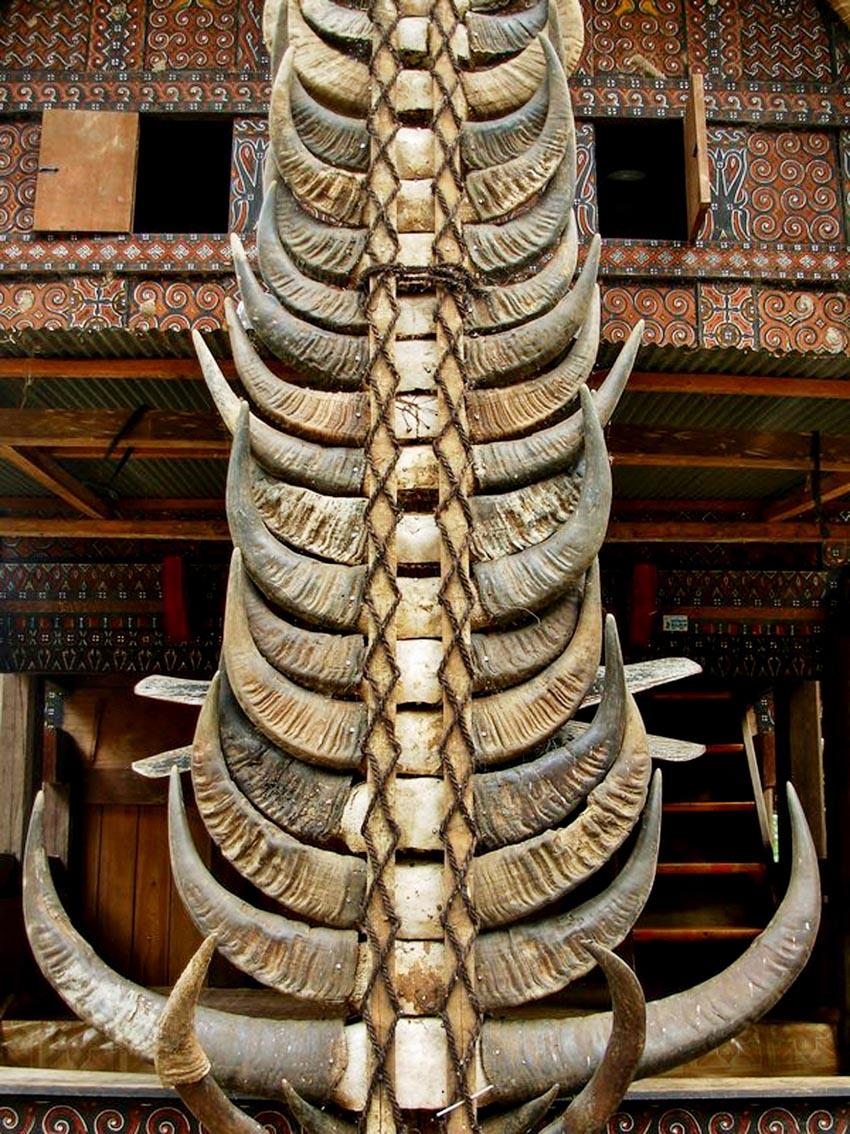 Đa dạng nhà gỗ truyền thống Indonesia - 20