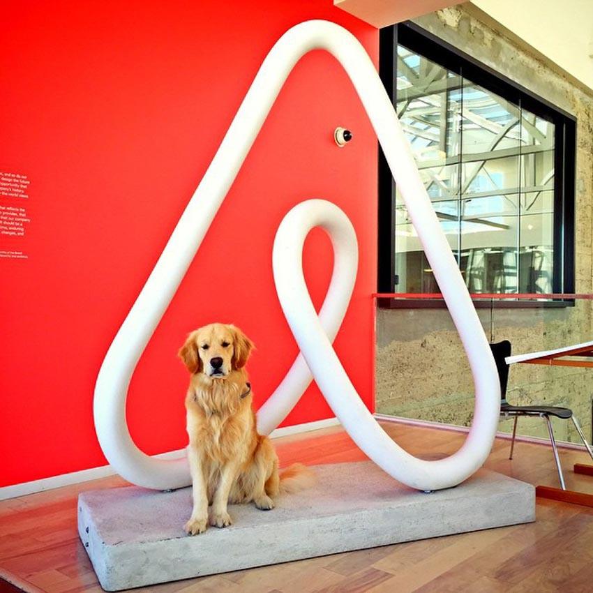 Những chú chó cưng của các CEO ở thung lũng Silicon - 23