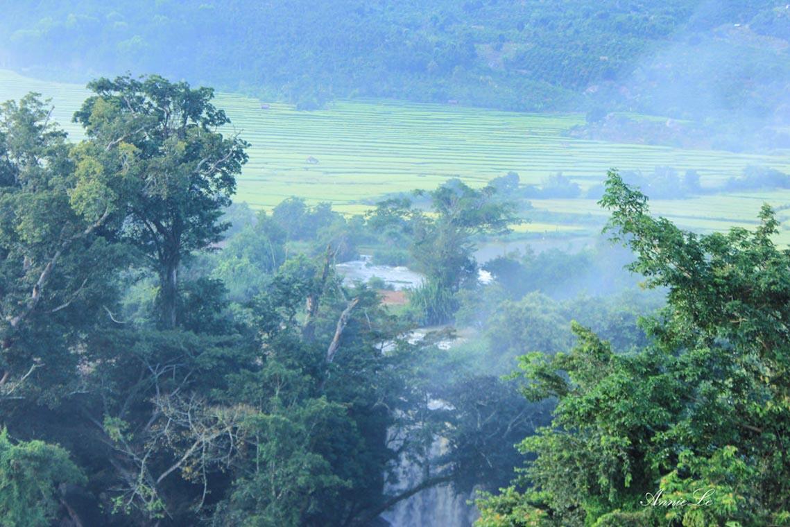 Nên thơ và khoáng đạt rừng núi Di Linh - 15