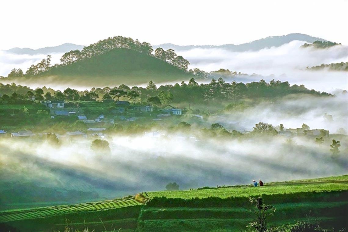 Nên thơ và khoáng đạt rừng núi Di Linh - 2