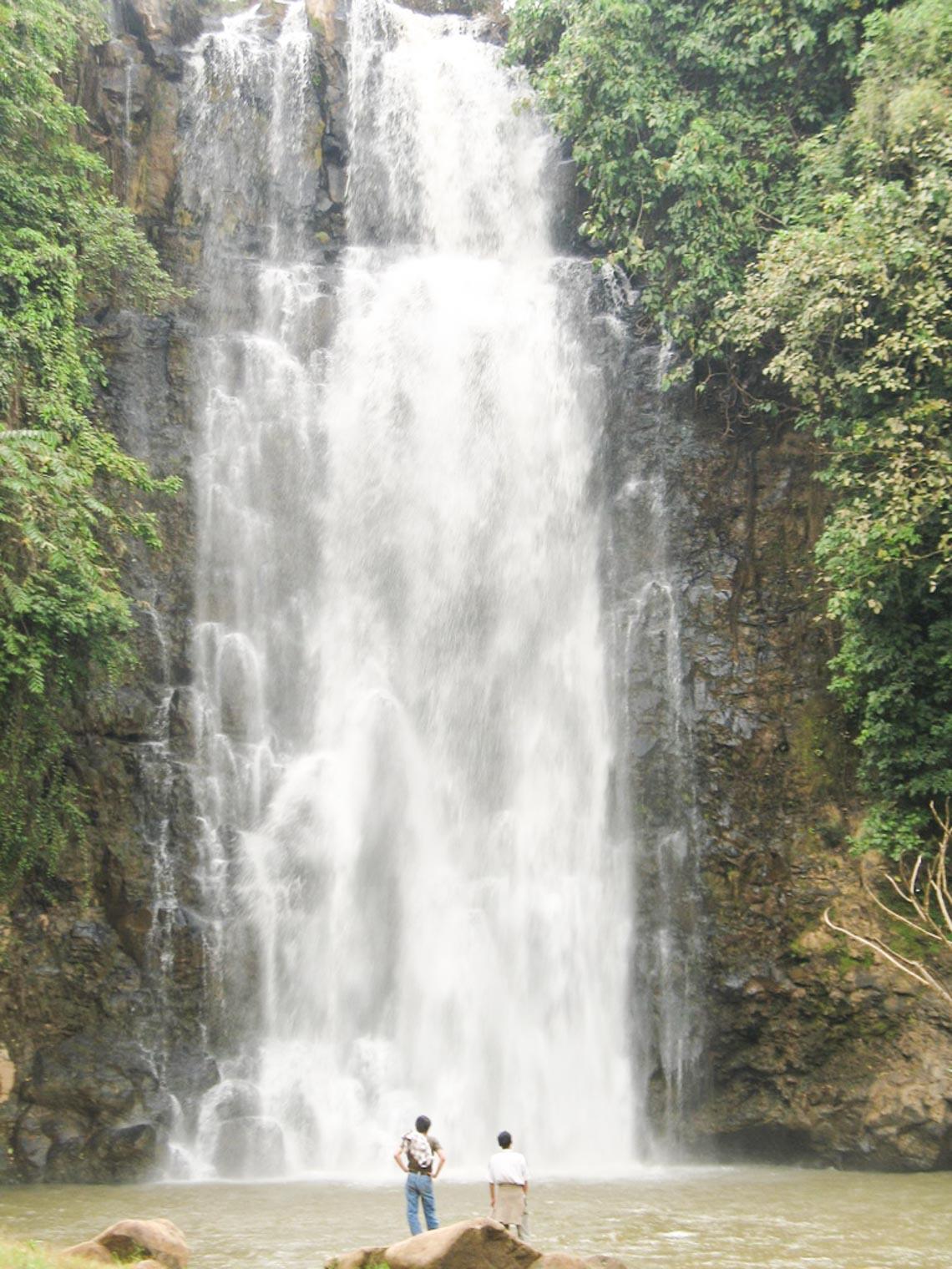 Nên thơ và khoáng đạt rừng núi Di Linh - 3