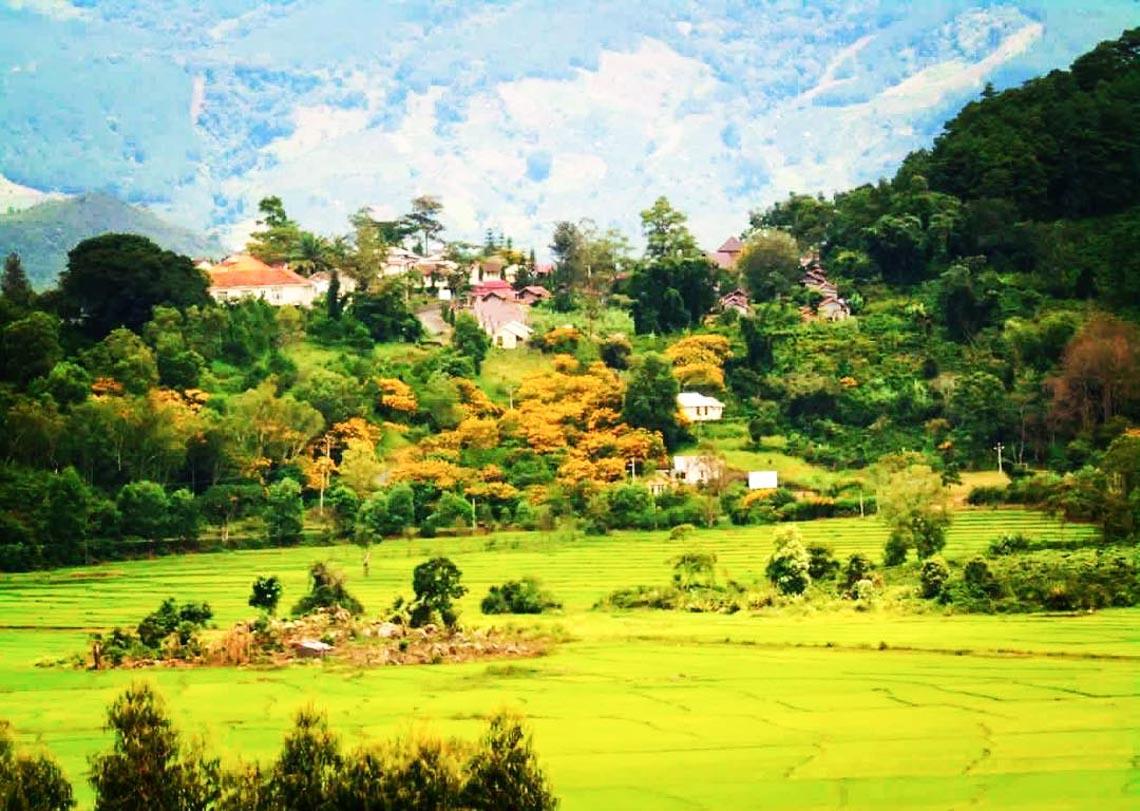 Nên thơ và khoáng đạt rừng núi Di Linh - 6
