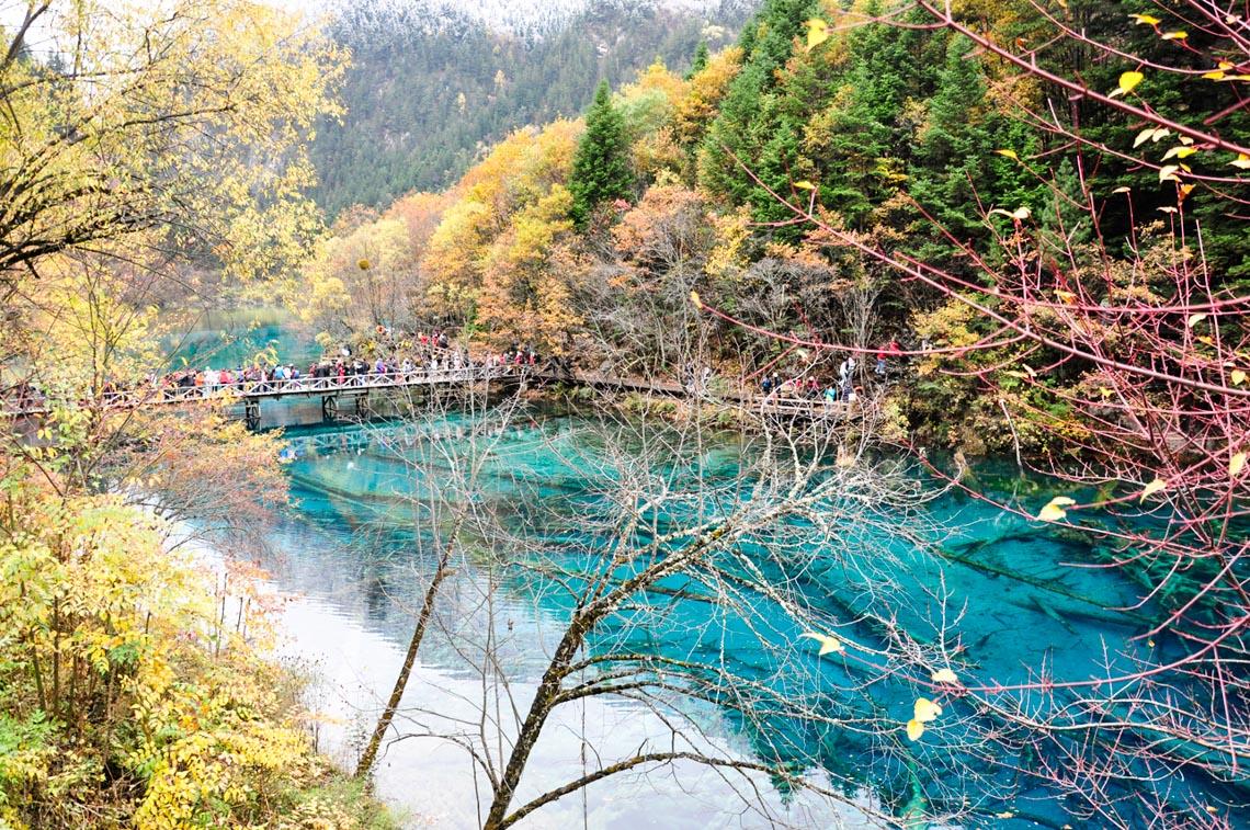 Rừng xanh tuyết trắng Cửu Trại Câu - 4