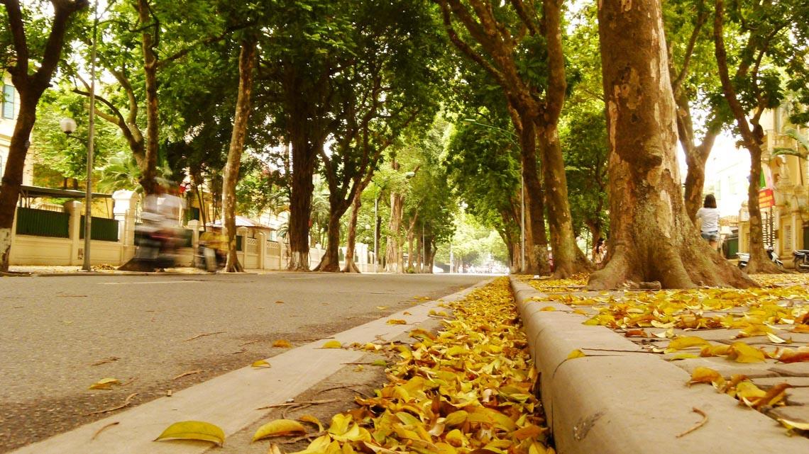 Trà dư tửu hậu: Sâu lắng mùa thu - 7