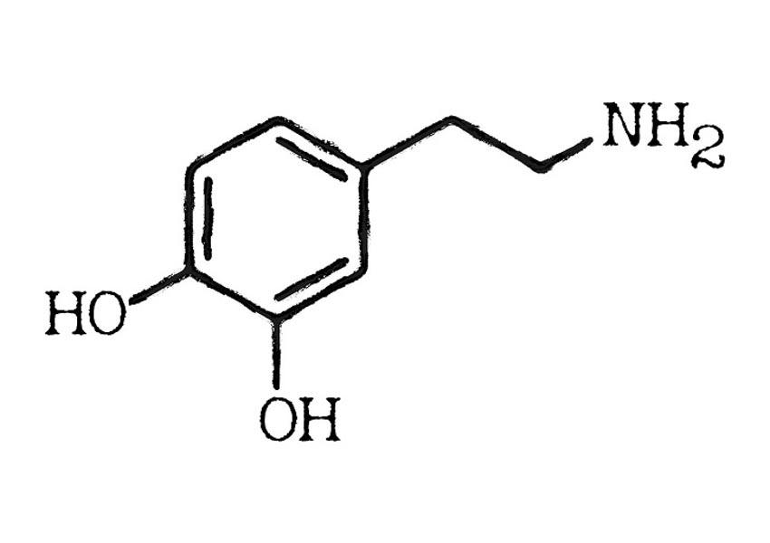 Biện pháp tự nhiên giúp cân bằng hóa chất não bộ - 2