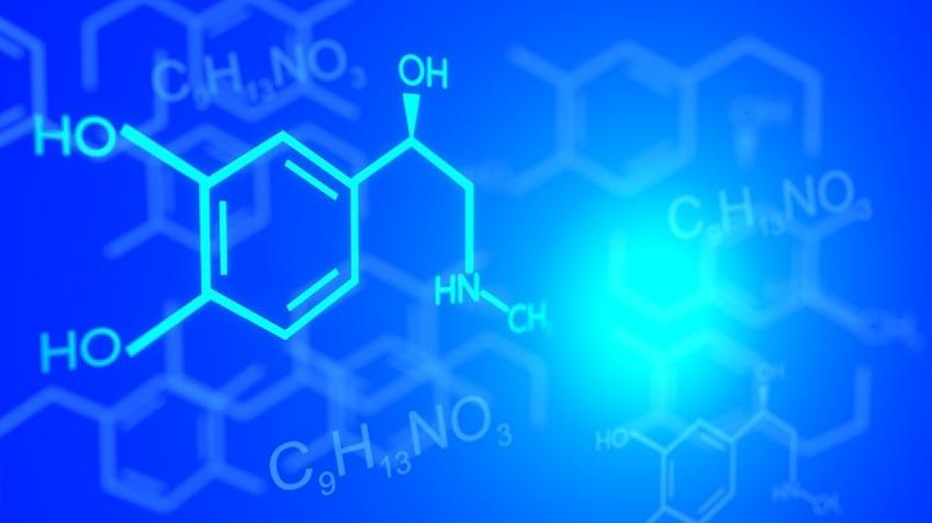 Biện pháp tự nhiên giúp cân bằng hóa chất não bộ - 7