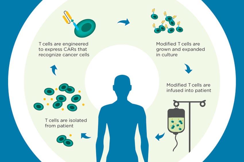 Miễn nhiệm trị: Chữa trị ung thư bằng hệ miễn dịch - 4