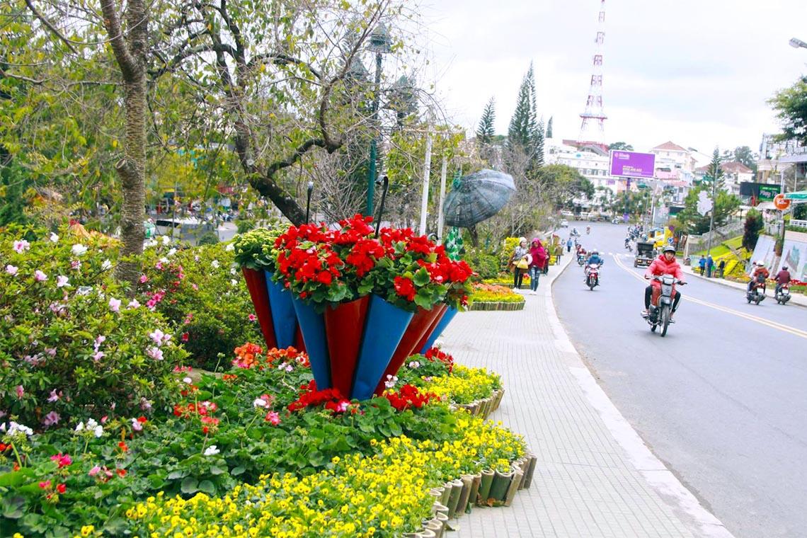 Lễ hội hoa Đà Lạt 2019: Nhiều loài hoa mới sẽ tô điểm mặt hồ Xuân Hương - 4