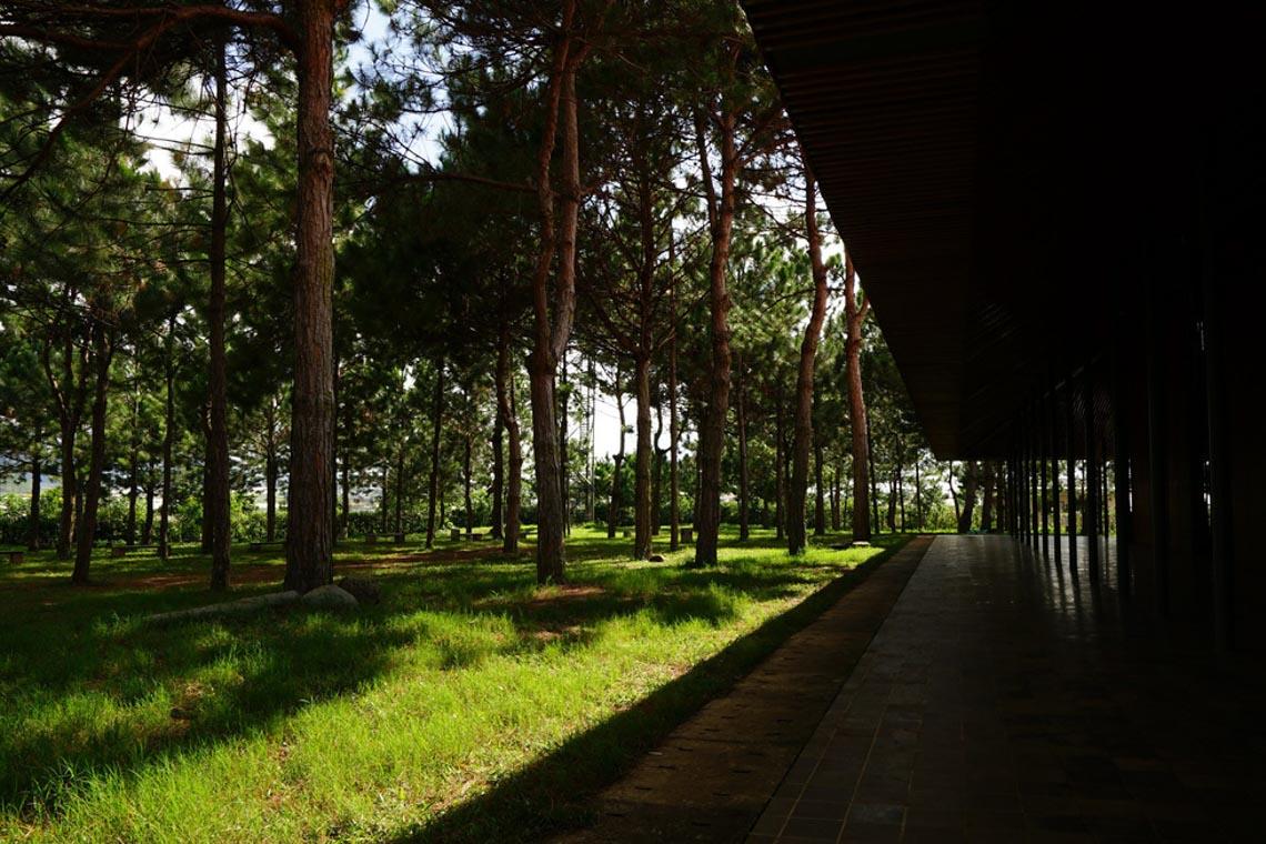 Nhà thờ Ka Đơn - linh hồn Churu giữa rừng Lâm Viên - 4