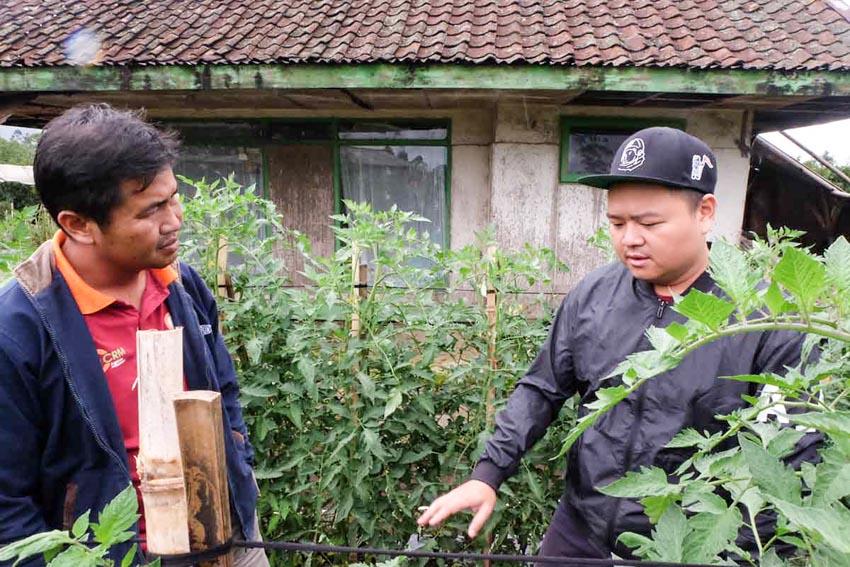 Crowde: Startup Indonesia thiết lập cơ sở hạ tầng mới cho ngành nông nghiệp -4