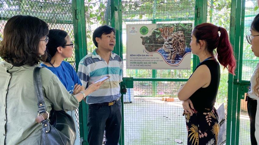 Giao trả mèo rừng quý hiếm về vườn quốc gia Cát Tiên -1