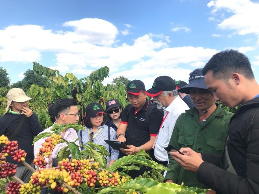 10 năm gắn kết cùng nông dân nâng cao chất lượng cà phê Việt Nam -2