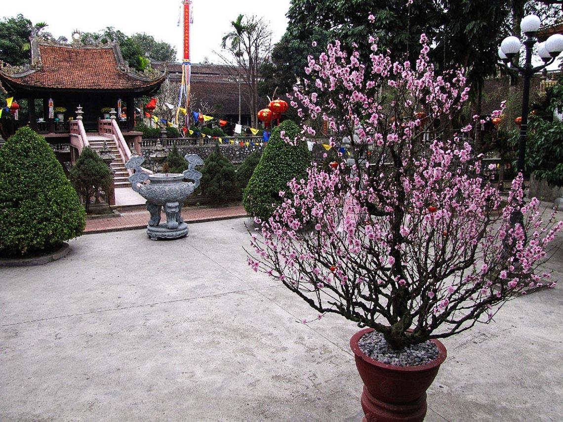 Dư Hàng, ngôi chùa cổ nhất Hải Phòng-4