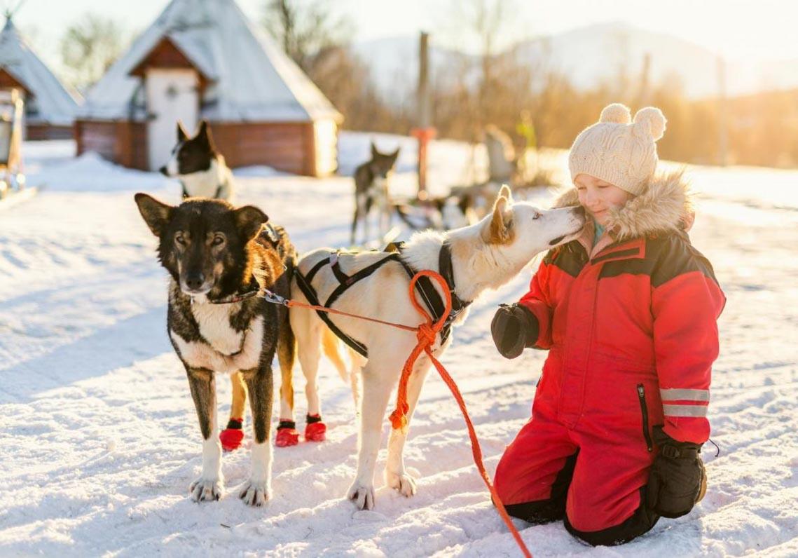 """Sống trong vùng """"mặt trời nửa đêm"""" Lapland-13"""